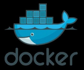 Docker 1.5.0 RC1 发布 完全支持 IPv6