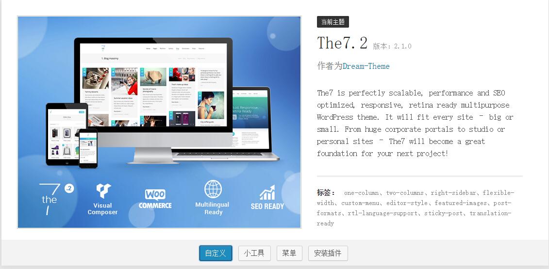 225 The7 v4.4.8与 The7.2 v2.1.0给主题添加博客自动摘要功能