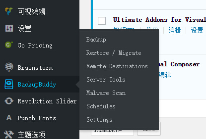 210 wordpress换域名如何整站迁移?WordPress BackupBuddy使用教程