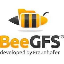 并行文件系统 BeeGFS 现已开源-芊雅企服