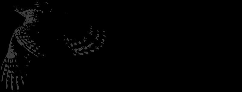 GoshawkDB 0.2 发布 分布式对象数据库-芊雅企服