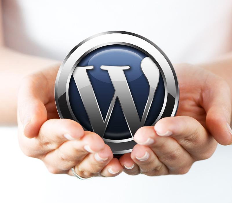 如何保护你的WordPress网站免受恶意黑客的攻击?-芊雅企服