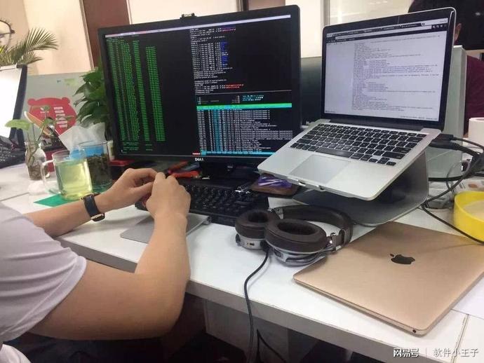 软件开发人员的编程障碍,你知道多少?-芊雅企服