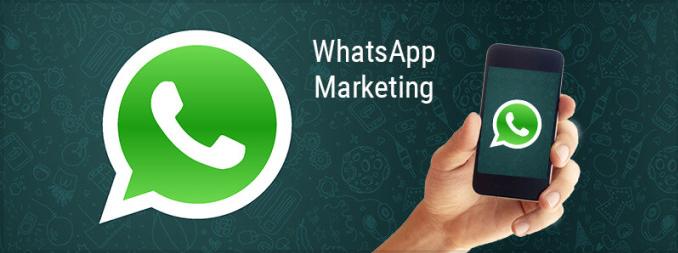 Whatsapp Whatsapp商业营销软件