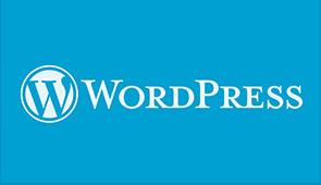 WordPress1 WordPress网站开发及其许多功能,如自定义开发