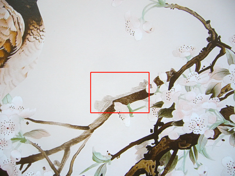 图2 2 1 6 2局部 如何鉴别和收藏刺绣?